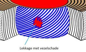 De discus met inkijk tot de eerste lamel (laag met vezels). Te zien is hoe de eerste scheuren plaatsvinden: het begin van het herniaprocessdat tevens kan leiden tot spit.
